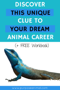 Discover This Unique Clue To Your Dream Animal Career