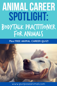 Animal Career Bodytalk Practitioner for Animals> Check out this animal career interview. Plus FREE Animal Career Quiz!