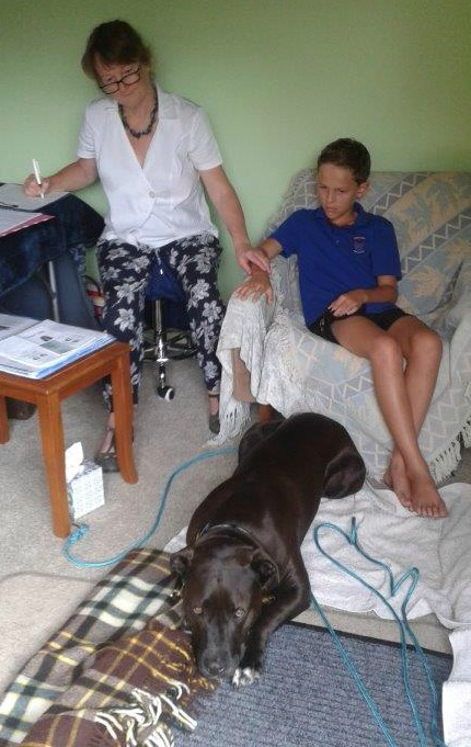Di Scurr giving a bodytalk healing treatment to a dog