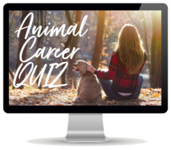 Animal Career Quiz