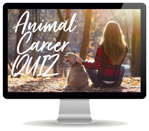 Free Animal Career Quiz - take the quiz and find out which animal-related careers will suit YOUR PERSONALITY. Get a custom report listing 20 animal careers that may be a good fit for YOU!
