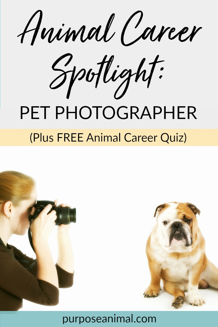 Animal Career Spotlight: Pet Photographer. Check out this interview all about becoming a pet photographer. Plus take the FREE Animal Career Quiz!