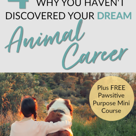 Struggling to find your dream animal career? In this blog post I share the 4 biggest mistakes I made when trying to find my dream animal career! Also check out the FREE 5 Day Pawsitive Purpose Mini Course!